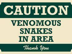 VenomousSnakes